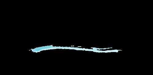 Doodlewash_Site_Logo_med1