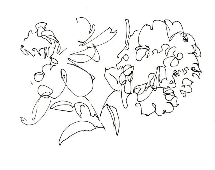 s_flower_peony1