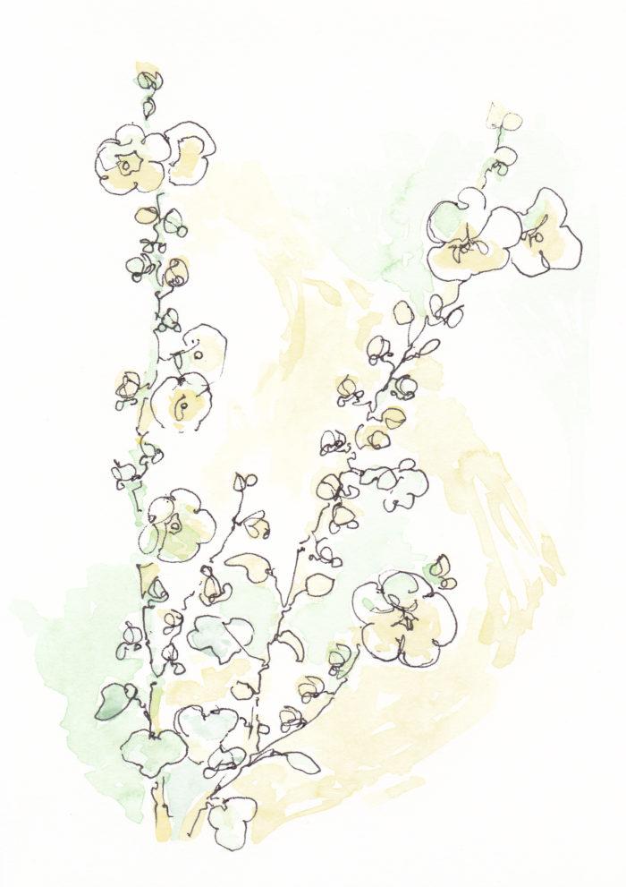 w_flowers_tall