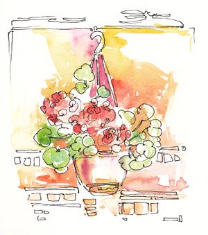 geranium_small
